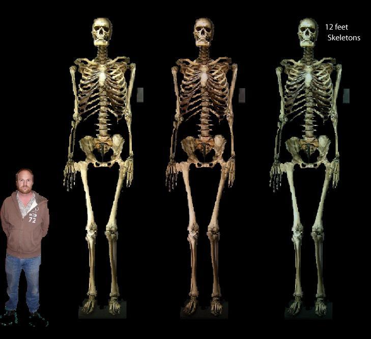 Documentalium: El gigante de Castelnau